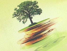 Acquisti Verdi